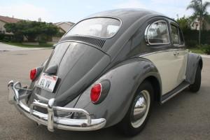 '64 VW Bug: Right Rear